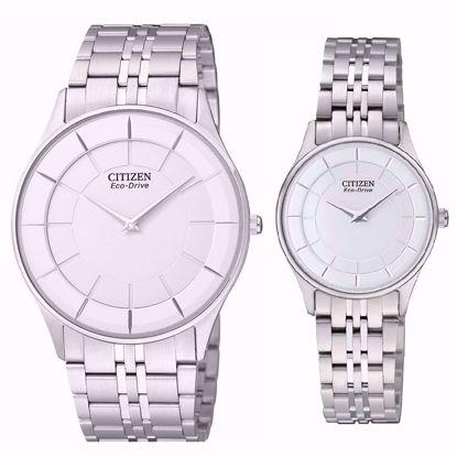 خرید اینترنتی ساعت اورجینال سیتی زن AR3010-65A و EG3210-51A
